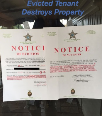 Evicted tenant destroys property